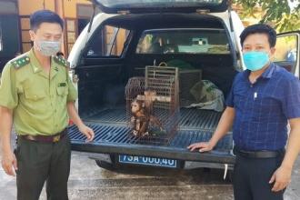 Trung tâm Cứu hộ bảo tồn và Phát triển sinh vật tiếp nhận, cứu hộ động vật hoang dã